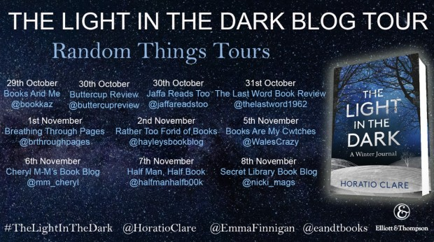 FINAL FINAL Light in the Dark BT Poster